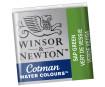 Akvarelinių dažų pakuotė Cotman 1/2 599 sap green