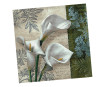 Napkins 33x33cm 20pcs 3-ply White Beauties