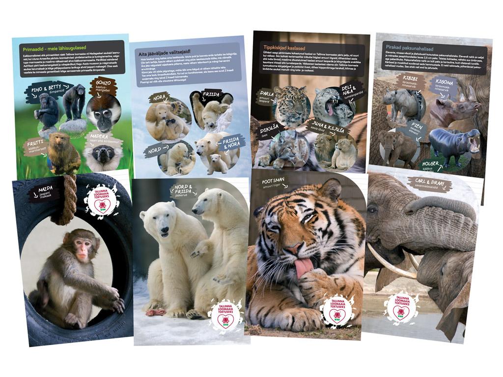 Vihik Tallinna Loomaaed 12 lehte 23 joont assortii