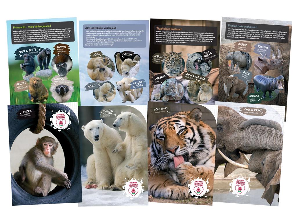 Vihik Tallinna Loomaaed 12 lehte 5x5 ruut assortii