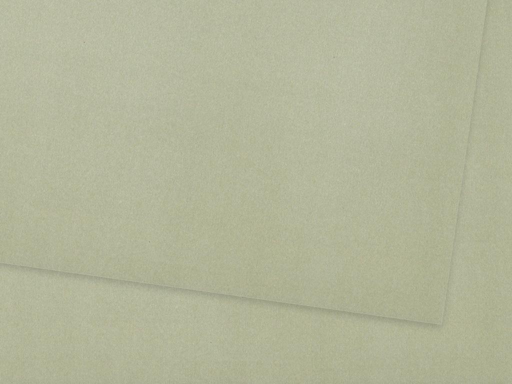 Tinted paper Ursus A4/130g 88 matt silver