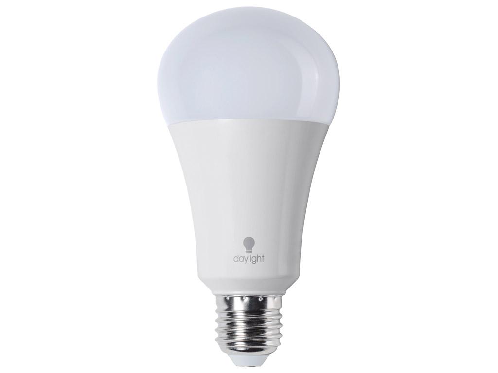 LED lemputė (dienos šviesos) Daylight 15W E27