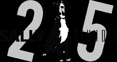 logo-sobrad-sally-stuudio-25
