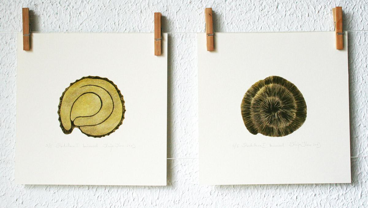 Taimed kuivnõela tehnikas (Kaija Kesa)