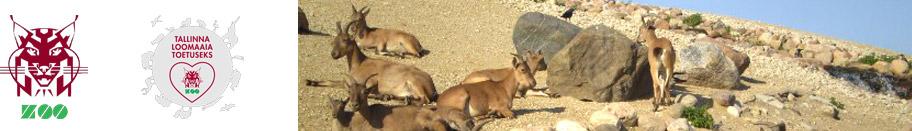 toetame-tallinna-loomaaed